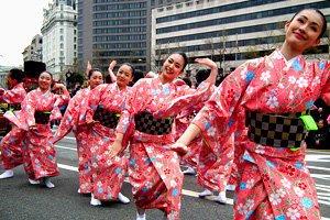 Kirschblüten Sakura Kimono Tanzende Frauen auf einem Straßenfest