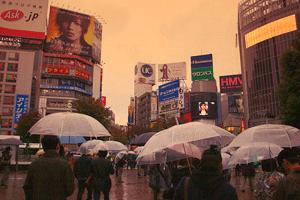 Japan Shibuya Viertel - Viele Transparente Regenschirme auf der Straße. Auf den Gebäuden sind Werbetafeln aufgestellt.